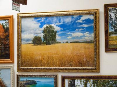 Фотокартина красота русских полей