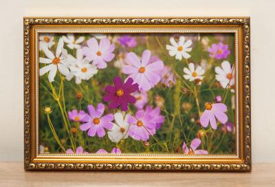Фотокартина с цветами