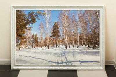 Фотокартина на холсте - зимний Сибирский пейзаж