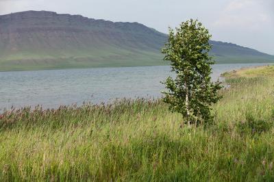 Фотография пейзаж продам