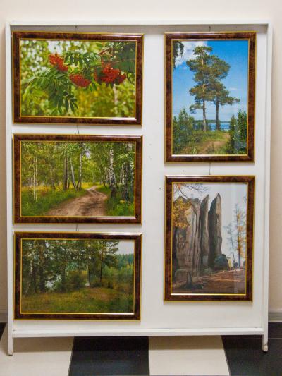 Фотокартины с природой продам в Красноярске
